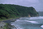 Black beach and windswept trees on Dominica's Atlantic side