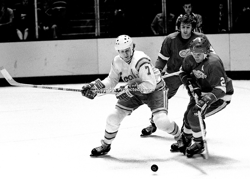 California Golden Seals Dave Gardner with Detroit Redwings Gary Bergman..(1975 photo/Ron Riesterer)
