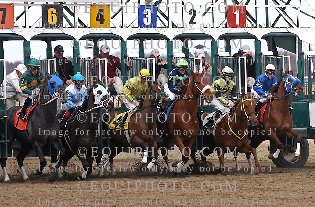 Jersey Jazz #3 with Lindy Gott at Parx Racing in Bensalem, Pennsylvania March 11, 2013.  Photo By EQUI-PHOTO