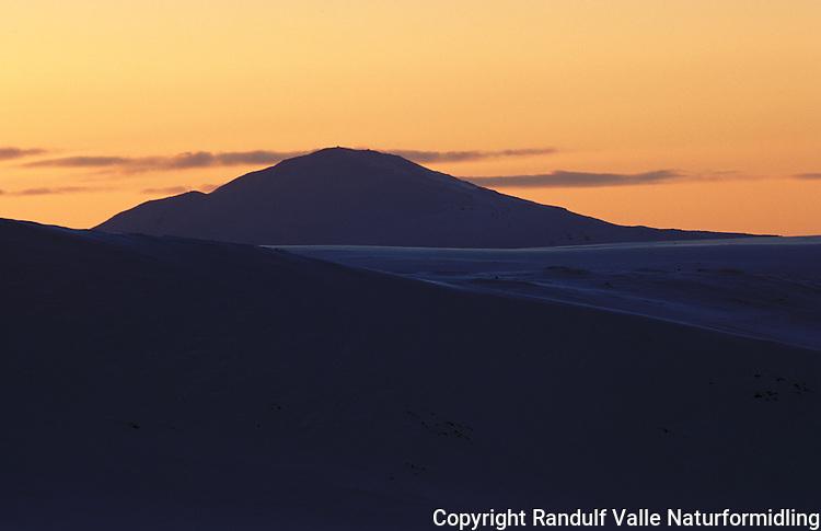Fjellet Forollhogna sett fra øst en vinterkveld ---- The mountain Forollhogna at sunset