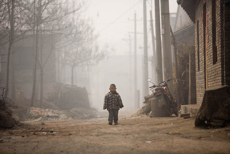 A small bow walks through the village of Donglu, on the outskirts of Linfen, where villagers have difficulty in selling their crops because of the severe pollution.