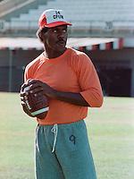 Roy Dewalt BC Lions quarterback 1983. Copyright photograph Scott Grant
