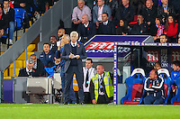 Alan Pardew makes notes during the EPL - Premier League match between Crystal Palace and Liverpool at Selhurst Park, London, England on 29 October 2016. Photo by Steve McCarthy.