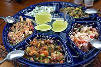 Alimentos. Prato de Ceviche. Foto de Cris berger.