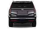 Straight rear view of a 2015 Cadillac Escalade Premium 5 Door SUV 2WD Rear View  stock images