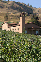 Tsillian Cellars is the premiere winery in the Lake Chelan Valley. It hosts and puts on a variety of musical events during the summer months and now has an Italian restaurant for its customers.