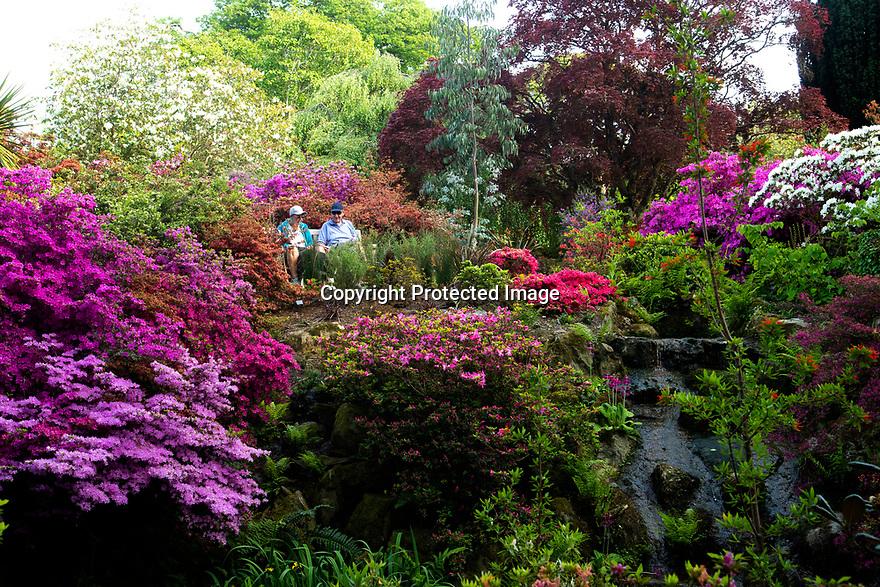 15/05/19<br /> <br /> Bodnant Garden, Conwy, North Wales.<br /> <br /> All Rights Reserved, F Stop Press Ltd +44 (0)7765 242650 www.fstoppress.com rod@fstoppress.com