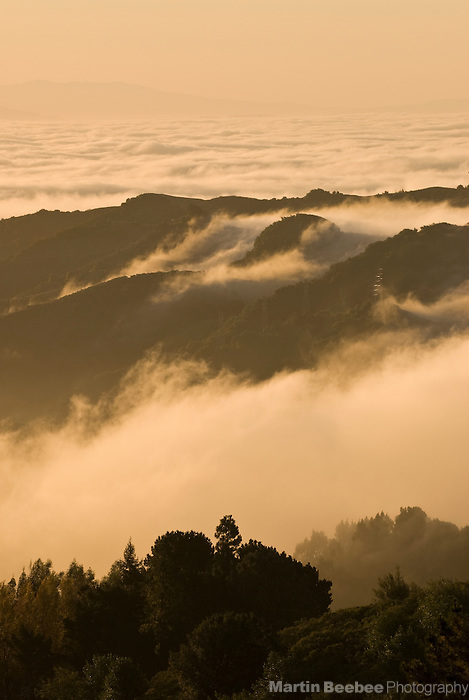 Fog rolls over the Oakland Hills at sunrise, California