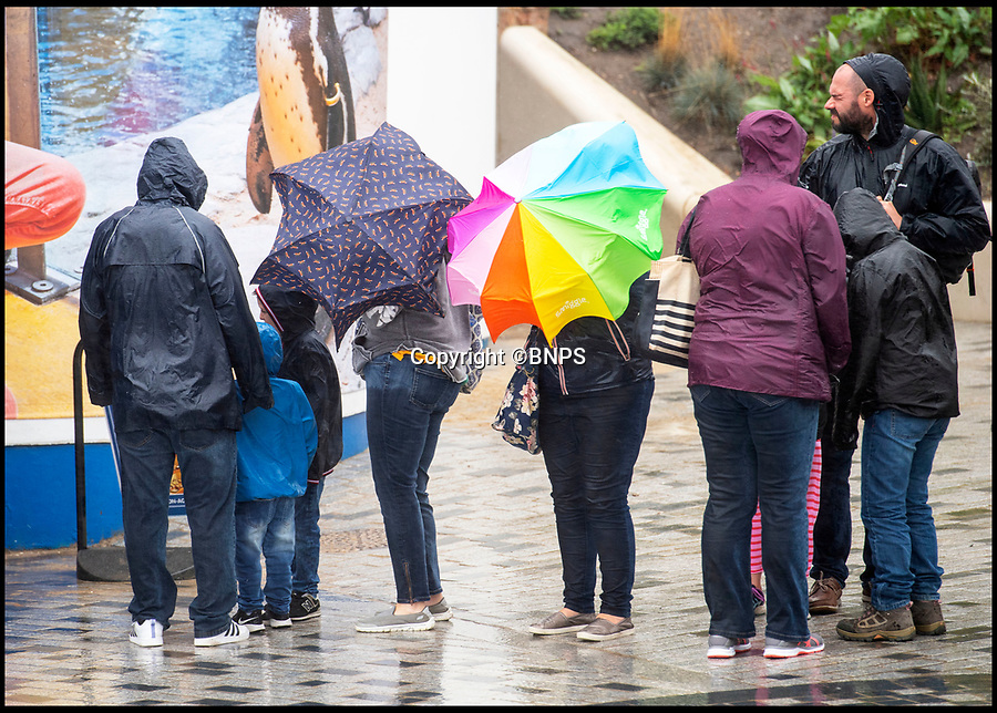 BNPS.co.uk (01202 558833)<br /> Pic: PhilYeomans/BNPS<br /> <br /> Queue's for the aquarium...<br /> <br /> Rank Holiday Sunday....<br /> <br /> The growing trend for staycation's has taken a battering today as rain and gales swept in on the August bank holiday sunday.<br /> <br /> Holidaymakers in Bournemouth queued to get into the Oceanariam aquarium as ironically it was the driest place on the rain lashed seafront.