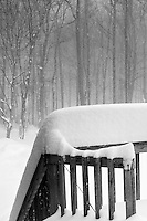 Snowstorm Images on the Deck
