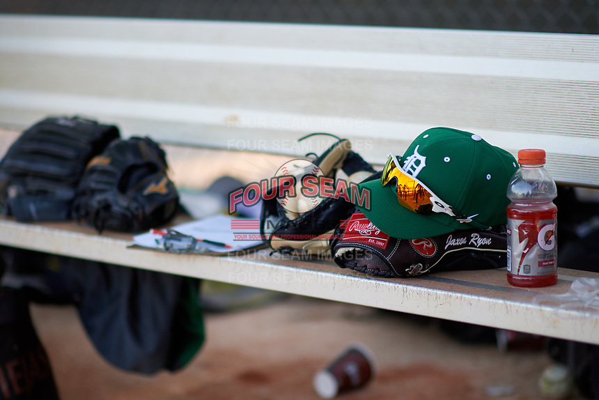 Dartmouth Big Green bench during a game against the Northeastern Huskies on March 3, 2018 at North Charlotte Regional Park in Port Charlotte, Florida.  Northeastern defeated Dartmouth 10-8.  (Mike Janes/Four Seam Images)