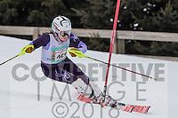2016 Section 6 Alpine Ski Meet