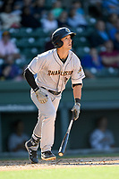 Designated hitter Chris Hess (2) of the Charleston RiverDogs bats in a game against the Greenville Drive on Sunday, April 29, 2018, at Fluor Field at the West End in Greenville, South Carolina. Greenville won, 2-0. (Tom Priddy/Four Seam Images)