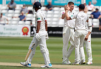 Henry Brookes of Warwickshire celebrates taking the wicket of Rishi Patel during Essex CCC vs Warwickshire CCC, Specsavers County Championship Division 1 Cricket at The Cloudfm County Ground on 15th July 2019