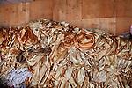 """PHNOM PHEN, CAMBODIA, APRIL 2013:Mondial Centre, realizzato nel 2002 su un terreno in Mao Tse-Tung Boulevard dove  si trovava il mercato dei ladri. Ha una capacità di 5000 persone sedute a 500 tavoli in 17 sale. Un tavolo per 10 costa da 20 a 22 dollari. Per la cena bisogna aggiungere circa 100 dollari a tavolo.© Giulio Di Sturco per """"D"""" della Repubblica"""