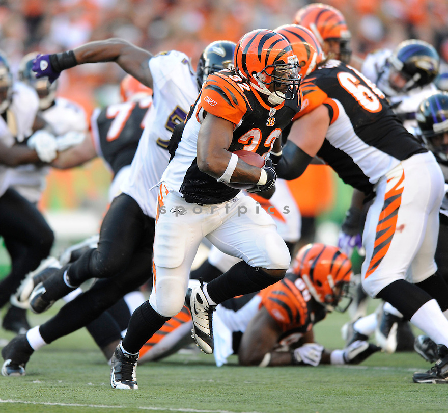CEDRIC BENSON, of the Cincinnati Bengals, in action during the Bengals game against the Baltimore Ravens on November 8, 2009 in Cincinnati, OH. Bengals won 17-7.