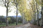 Principe Park and Gardens in Autumn, El Escorial, Madrid, Spain