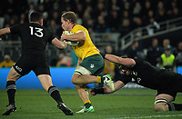 Michael Hooper beats Kieran Read (right) during the Rugby Championship and Bledisloe Cup rugby match between the New Zealand All Blacks and Australia Wallabies at Forsyth Barr Stadium in Dunedin, New Zealand on Saturday, 26 August 2017. Photo: Dave Lintott / lintottphoto.co.nz