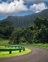 Road in Hoomaluhia Botanical Gardens. Oahu, Hawaii
