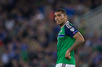 Northern Ireland's Josh Magennis    <br /> <br /> <br /> Photographer Craig Mercer/CameraSport<br /> <br /> FIFA World Cup Qualifying - European Region - Group C - Northern Ireland v Czech Republic - Monday 4th September 2017 - Windsor Park - Belfast<br /> <br /> World Copyright &copy; 2017 CameraSport. All rights reserved. 43 Linden Ave. Countesthorpe. Leicester. England. LE8 5PG - Tel: +44 (0) 116 277 4147 - admin@camerasport.com - www.camerasport.com