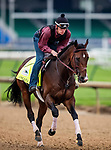 LOUISVILLE, KENTUCKY - APRIL 30: Omaha Beach and Taylor Cambra gallop in preparation for the Kentucky Derby at Churchill Downs in Louisville, Kentucky on April 30, 2019. Evers/Eclipse Sportswire/CSM