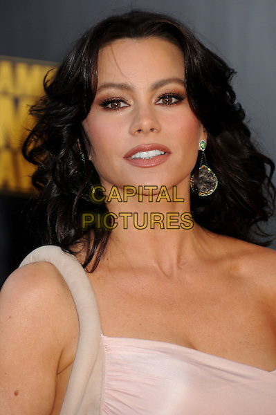 SOFIA VERGARA. 2009 American Music Awards - Arrivals held at the Nokia Theatre L.A. Live, Los Angeles, California, USA..November 22nd, 2009.headshot portrait dangling earrings pink sophia viagra one shoulder AMA AMA's .CAP/ADM/BP.©Byron Purvis/AdMedia/Capital Pictures.