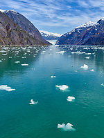 Glacier's Journey