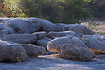 Rounded rocks a geological special place in Glen Rose Texas