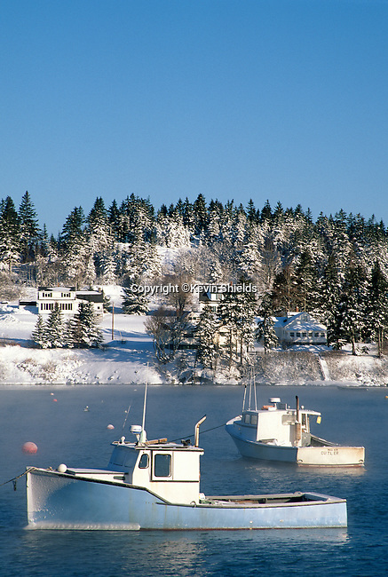 Harbor scene, Cutler, Washington County, Maine, USA