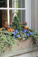 Four Season Window Box