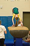 BC Gymnastics 2010