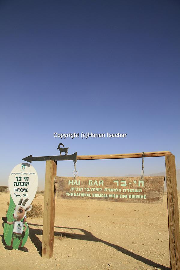Israel, Arava, Hai Bar, the National Biblical Wildlife Reserve
