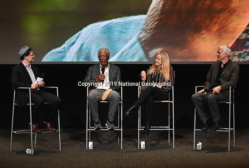 "LOS ANGELES - JUNE 5:  Matthew Carey, Morgan Freeman, Lori McCreary and James Younger attend an FYC event for National Geographic's ""The Story of God"" at the TV Academy on June 5, 2019 in Los Angeles, California. (Photo by Scott Kirkland/National Geographic/PictureGroup)"
