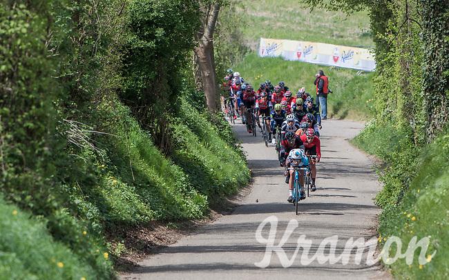 peloton speeding down the Gulperenberg<br /> <br /> 52nd Amstel Gold Race (1.UWT)<br /> 1 Day Race: Maastricht &rsaquo; Berg en Terblijt (264km)