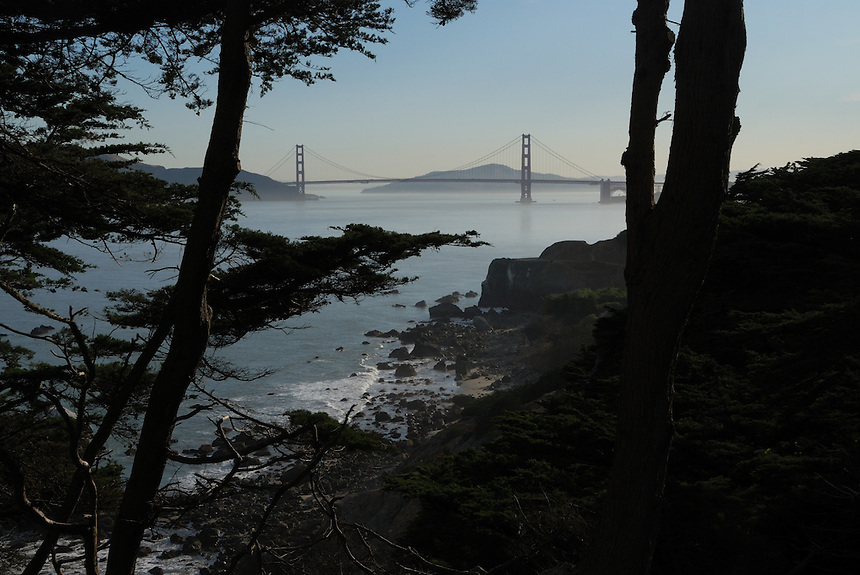 The Golden Gate bridge is in the distance as seen from Land's End in San Francisco, California.