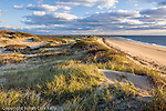 Sunset light paints the dunes at Herring Cove Beach, Cape Cod National Seashore, MA, USA