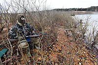 NWA Democrat-Gazette/FLIP PUTTHOFF <br /> Brush along the shoreline makes a natural duck blind at Beaver Lake. Waterfowl hunting is allowed along the public shoreline at the reservoir, except in Army Corps of Engineers parks. Alan Bland of Rogers watches for ducks Dec. 28 2018 at the lake.