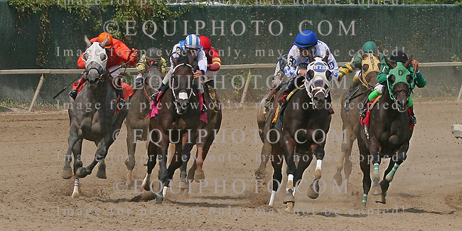 Sixth Race at Parx Racing in Bensalem, Pennsylvania August, 2012.  Photo By EQUI-PHOTO