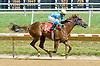 Bishamon winning at Delaware Park on 7/5/12