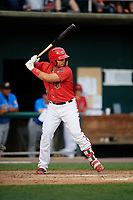 Harrisburg Senators designated hitter Raudy Read (8) at bat during a game against the Akron RubberDucks on August 18, 2018 at FNB Field in Harrisburg, Pennsylvania.  Akron defeated Harrisburg 5-1.  (Mike Janes/Four Seam Images)