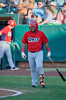 Mario Sanjur (30) of the Orem Owlz comes up to bat against the Ogden Raptors at Lindquist Field on June 22, 2019 in Ogden, Utah. The Owlz defeated the Raptors 7-4. (Stephen Smith/Four Seam Images)