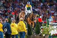Team 2 for the Jump and Drive: Andrew Hoy; Patrick Stuehlmeyer; Boyd Exell. 2019 GER-CHIO Aachen Weltfest des Pferdesports. Saturday 20 July. Copyright Photo: Libby Law Photography