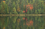 Bright Lake Hartwick Pines State Park Michigan