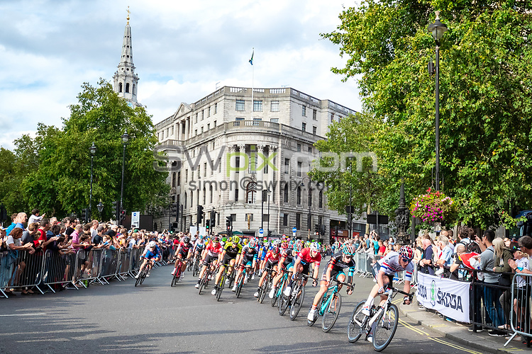 Picture by Alex Whitehead/SWpix.com - 09/09/2018 - Cycling - OVO Energy Tour of Britain - Stage 8: The London Stage. Connor Swift of Madison Genesis.