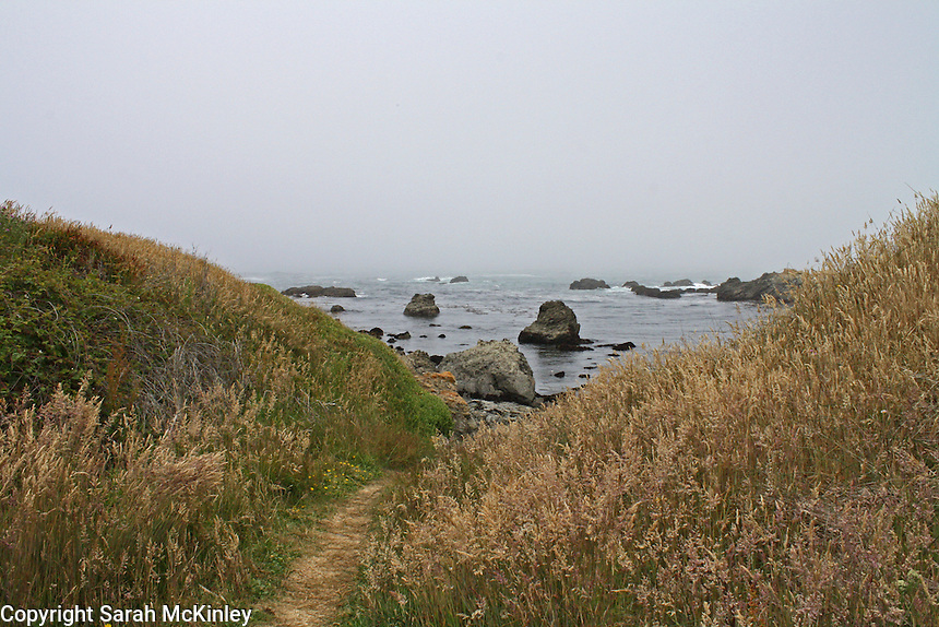 A footpath leads to the Pacific Ocean at MacKerricher State Park near Fort Bragg in Mendocino County in Northern California.