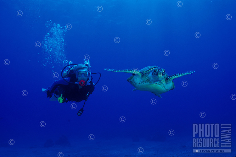 Woman scuba diving with Hawaiian green sea turtle