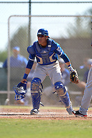 Kansas City Royals catcher Pedro Gonzalez (43) during an Instructional League game against the Cleveland Indians on October 9, 2013 at Surprise Stadium Training Complex in Surprise, Arizona.  (Mike Janes/Four Seam Images)