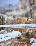 Yosemite National Park, CA: Clearing clouds on El Capitan with reflections in the still waters of the Merced River and snow covered oaks in late fall.