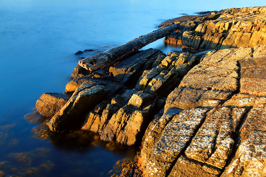 Cracked rocky shoreline, Washington Park, Fidalgo Island, Skagit County, Washington, USA