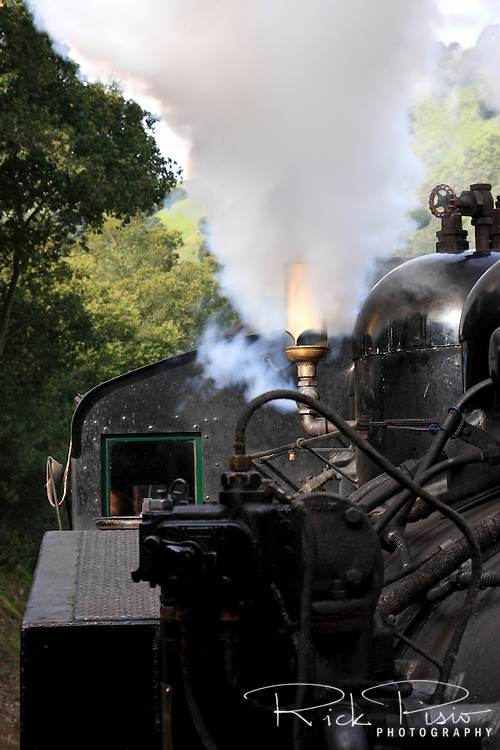 Steam is released through the whistle of California State Railroad Museums's Granite Rock Company Porter 0-6-0ST #10 as it travels through Niles Canyon during the 2010 Niles Canyon Railway Steamfest II.